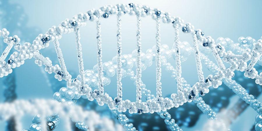 Двойной тест: биохимический скрининг