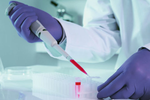 Тройной тест: биохимический скрининг